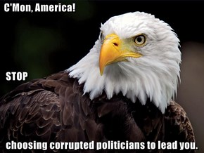 C'Mon, America!   STOP   choosing corrupted politicians to lead you.