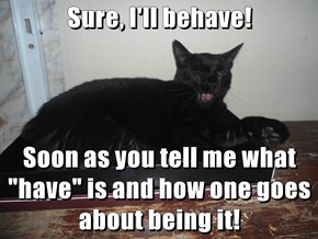 """Sure, I'll behave!   Soon as you tell me what """"have"""" is and how one goes about being it!"""