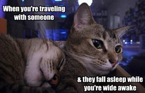 When you're traveling with someone