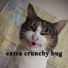 extra crunchy bug