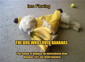 THE DOG WHO LOVED BANANAS