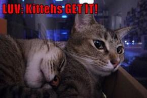 LUV: Kittehs GET IT!
