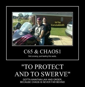 """""""TO PROTECT AND TO SWERVE"""""""