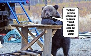 Supervisor Bear is behind schedule!