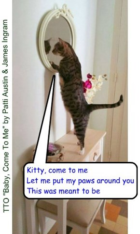 """Kitty, Come To Me"" (TTO ""Baby, Come To Me"" by Patti Austin & James Ingram)"