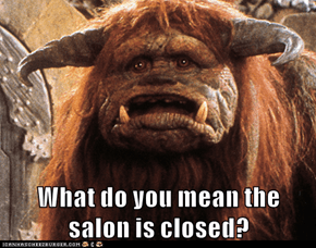 What do you mean the salon is closed?