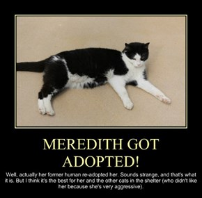 MEREDITH GOT ADOPTED!