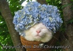 Happeh Mae Dae Cheezpeeps!