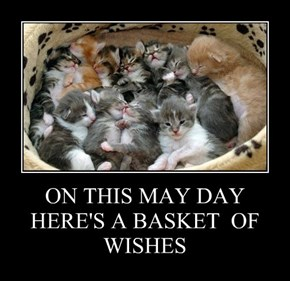 ON THIS MAY DAY HERE'S A BASKET  OF WISHES