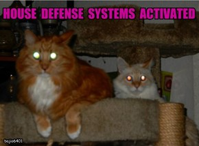 HOUSE  DEFENSE  SYSTEMS  ACTIVATED
