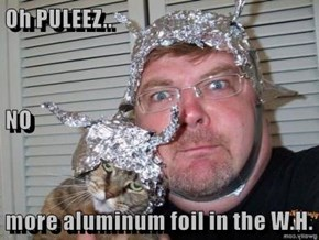 Oh PULEEZ.. NO more aluminum foil in the W.H.