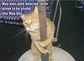 May your pole dancing skills  prove to be useful  this May Day