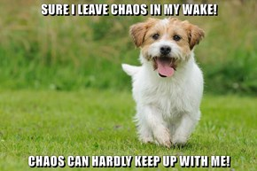 SURE I LEAVE CHAOS IN MY WAKE!  CHAOS CAN HARDLY KEEP UP WITH ME!