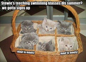 da news bout Stewie's swimming klasses is stirring up lots of buzz