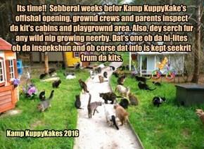 Gittin reddy fur da opening ob Kamp KuppyKakes 2016!