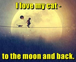 I love my cat -  to the moon and back.