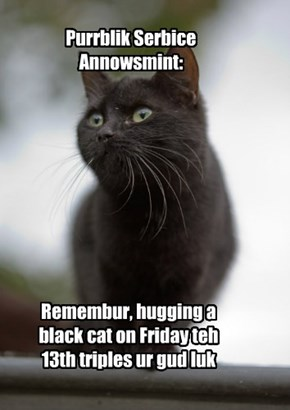 Black cats n Friday the 13th