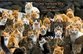 Okay, everybody smile and say CHEEZBURGER!!