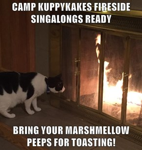 CAMP KUPPYKAKES FIRESIDE SINGALONGS READY  BRING YOUR MARSHMELLOW PEEPS FOR TOASTING!