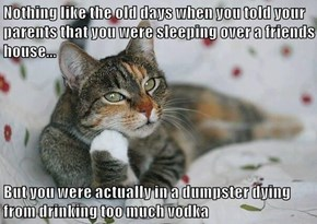 Nothing like the old days when you told your parents that you were sleeping over a friends house...  But you were actually in a dumpster dying from drinking too much vodka