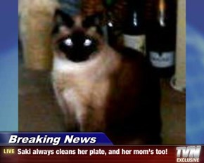 Breaking News - Saki always cleans her plate, and her mom's too!