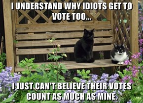 I UNDERSTAND WHY IDIOTS GET TO VOTE TOO...  I JUST CAN'T BELIEVE THEIR VOTES COUNT AS MUCH AS MINE.
