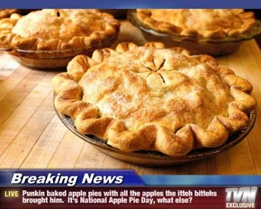 Breaking News - Punkin baked apple pies with all the apples the itteh bittehs brought him.  It's National Apple Pie Day, what else?