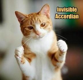Invisible  Accordian