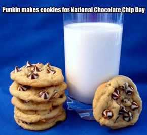 Punkin makes cookies for National Chocolate Chip Day
