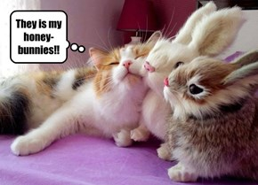 They is my honey-bunnies!!
