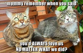 mommy remember when you said   you'd ALWAYS love us                                                                                     NO MATTER WHAT we did?
