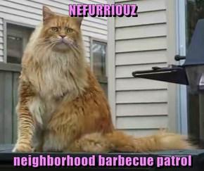NEFURRIOUZ  neighborhood barbecue patrol