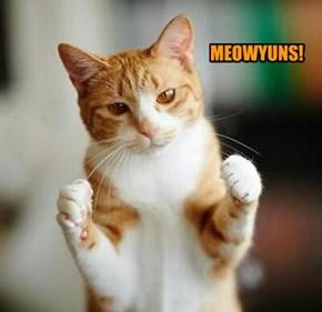 MEOWYUNS!