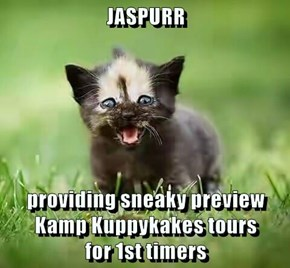 JASPURR  providing sneaky preview Kamp Kuppykakes tours                              for 1st timers