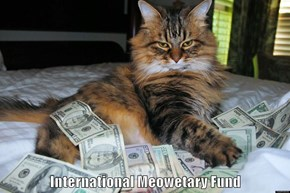 International Meowetary Fund