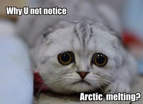 Why U not notice  Arctic Melting?