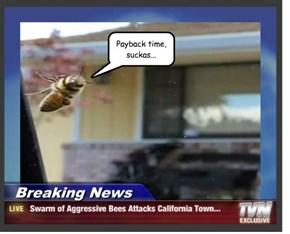 Boop the Bee