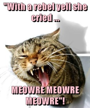 """""""With a rebel yell she cried ...  MEOWRE MEOWRE MEOWRE""""!"""