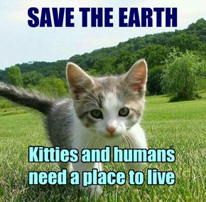 SAVE THE EARTH - Kitties and humans need a place to live