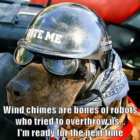 Wind chimes are bones of robots who tried to overthrow us...                               I'm ready for the next time
