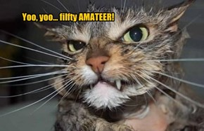 Yoo, yoo... filfty AMATEER!
