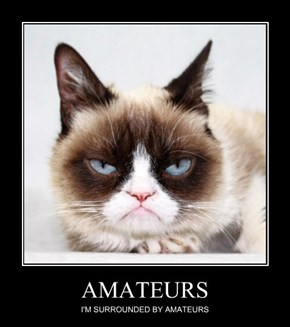 He's Had Some Challengers Lately, But Nobody Will EVER Be Able To Out Grump Grumpy Cat!