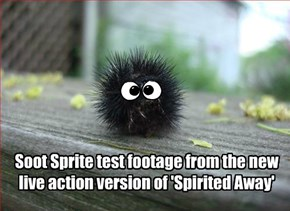 Soot Sprite test footage from the new live action version of 'Spirited Away'
