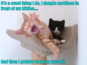 It's a cruel thing I do. I dangle sardines in front of my kitties....  And then I gobble them up myself!