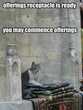 you may commence offerings