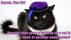Huzzah, Fine Sir!  Wouldst thou spare a farthing for a cat in need, or perhaps some catnip?
