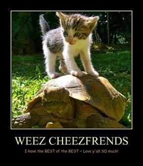 WEEZ CHEEZFRENDS