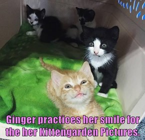 Ginger practices her smile for the her Kittengarden Pictures.