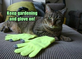 There's Never Too Many Gloves