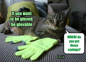 If you want  to be gloved,  be glovable